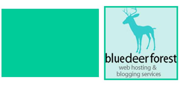 Web Hosting for Artist Websites + Free WordPress Webinar